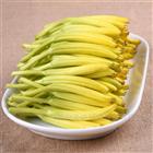 黄花菜烘干设备支持定制全行业烘干解决方案