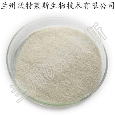 锯叶棕提取物 不饱和脂肪酸 1kg起售