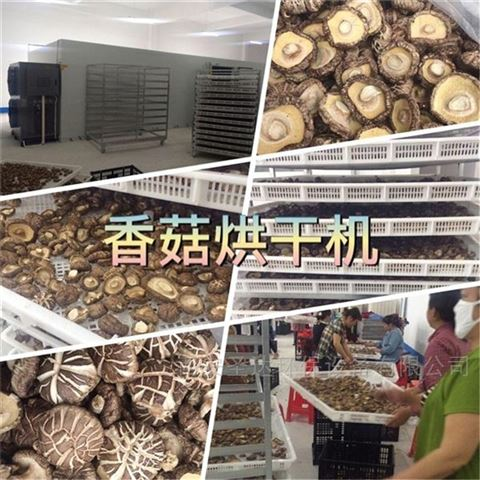 香菇烘干机厂家 空气能香菇干燥机