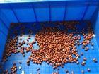 花生米烘培机厂家推荐 微波烘焙熟化设备