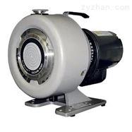 美国Agilent TriScroll 300干式涡旋泵