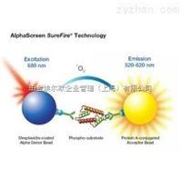 激酶检测试剂