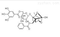 没食子酰芍药苷122965-41-7新品推荐