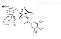 曼思特新品白芍提取物4-O-没食子酰白芍苷