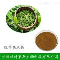 綠茶提取物 天然茶多酚10:1