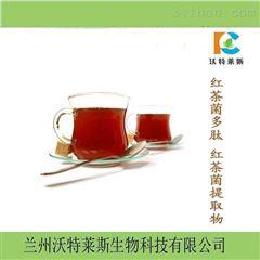 热销 红茶菌多肽  小分子肽