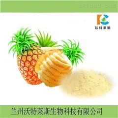 菠萝蜜粉  速溶果粉 提取物