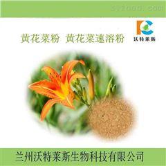 黄花菜提取物10:1  蔬菜粉 包邮