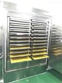 FD -20平方真空冷凍干燥機
