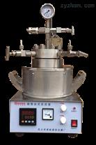 小型不銹鋼高壓反應釜GKCF-W