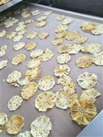 菠萝片柠檬片微波干燥杀菌设备杀菌灭菌