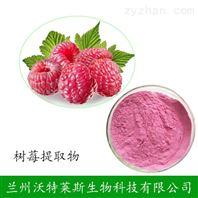 現貨供應 樹莓粉 紅樹莓果粉 質量保證