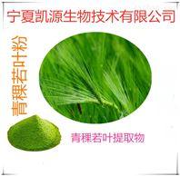 青稞若葉粉 汁粉 速溶粉 多種規格
