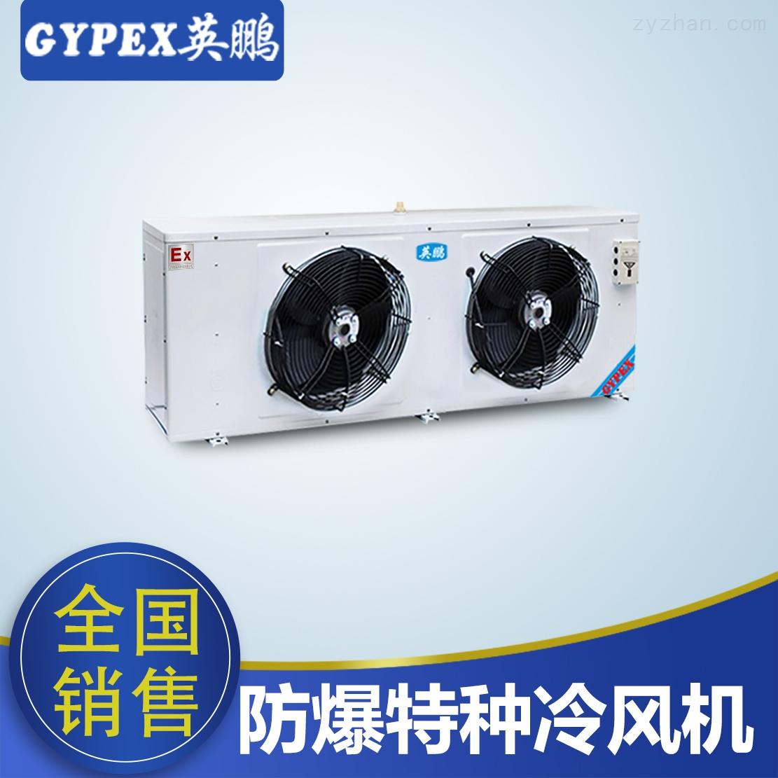 DJ-40英鵬防爆特種冷風機