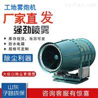多功能洒水雾炮车 移动式雾炮机价格