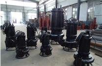神華集團專用潛水煤泥泵
