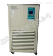 实验室低温恒温搅拌反应浴槽-DHJF-8005