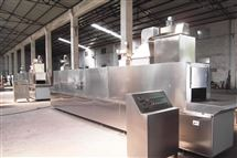 隧道带式干燥烘箱
