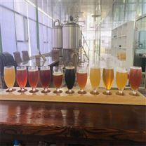 1000升小型啤酒厂精酿啤酒设备 德式工艺