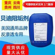曲靖MDC220貝迪阻垢劑 反滲透專用