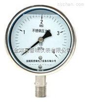 YTN-100耐震压力表生产厂家