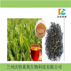 红茶速溶粉  红茶提取物10:1  现货