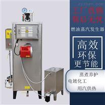 旭恩高效小型天然气蒸汽发生器