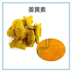 458-37-7姜黄提取物保健原料458-37-7