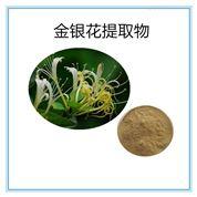 金銀花花體提取物藥食同源綠原酸84603-62-3