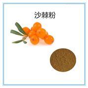10:1沙棘提取物沙棘黃酮保健原料