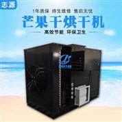 小型芒果烘干機自動化熱風循環烘箱