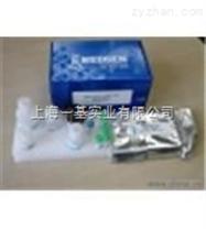 (Tn-Ⅰ)小鼠肌钙蛋白ⅠElisa试剂盒